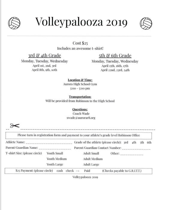 volleypalooza